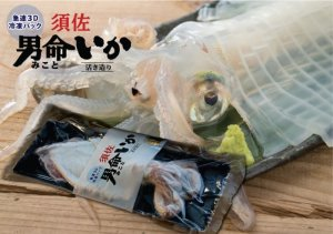 画像1: 須佐男命いか3D冷凍パック